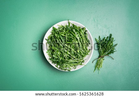 Bunch of fresh arugula in a white plate and an arugula bundle near it on a green mint table. Above view of harvested arugula. Making arugula salad. #1625361628