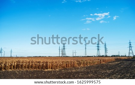 A electric poles with high-voltage wires in the middle of a field with dry corn plants. Plowed field in the foreground. #1625999575