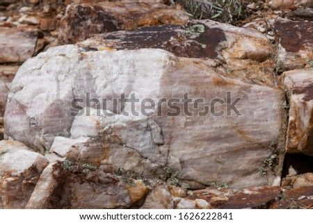 A large boulder of rose quartz in the sunshine and used as a step in a steep trail in Custer State Park, South Dakota. #1626222841