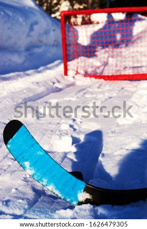 Shot the puck into the red hockey goal with a composite stick with a blue ribbon. Winter games and sports in the backyard #1626479305