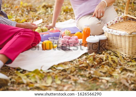 Close up picture of different food and drinks standing on the picnic blanket