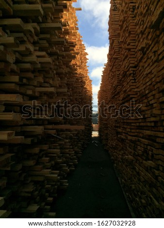 Lumber stacks at a mill in Oregon #1627032928