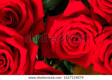 Red roses decorative bouquet background for decorative design. Invitation, greeting card. Flowers background. Valentines day.  #1627124074