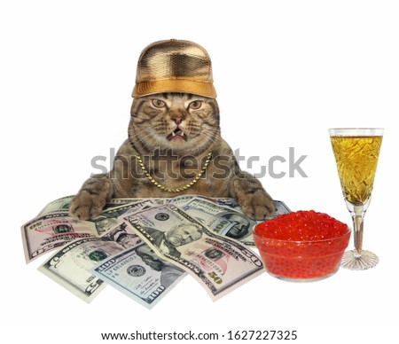 The cat businessman in a gold chain and a cap is sitting near a heap of dollars. He eats red caviar and drinks champagne. White background. Isolated. #1627227325