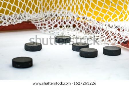 hockey pucks in the gate #1627263226