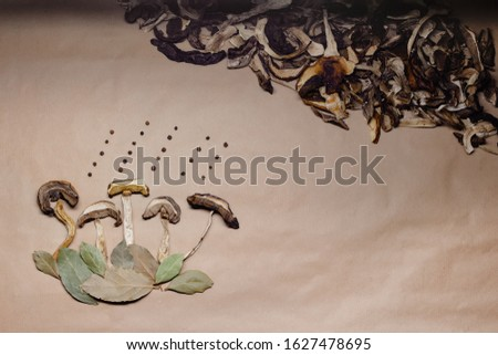 Top view of autumnal background or picture of nature for cooking menu or recipe made from sliced dried forest mushrooms and green bay leaves and black pepper on craft paper