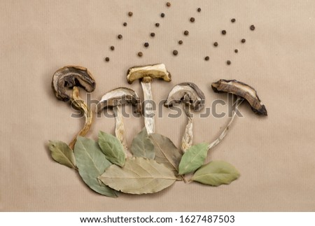 Top view of handmade picture of nature for cooking menu or recipe made from cut dried wild mushrooms and green bay leaves and black pepper on craft paper