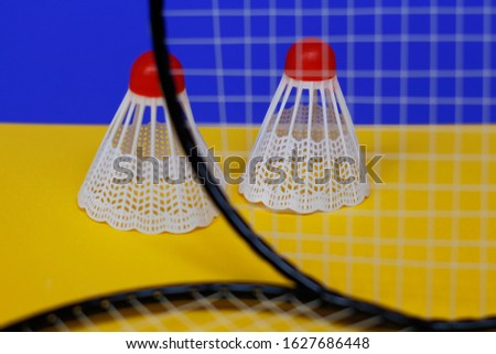 Badminton. Two shuttlecocks and two badminton racket. The colored background is blue and yellow. Idea for a magazine. #1627686448