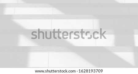 Background shadow and Nature shadows.Gray shadows trees leaf on white wall. Abstract shadows nature concept blurred background.White and Black.Texture shadows   #1628193709