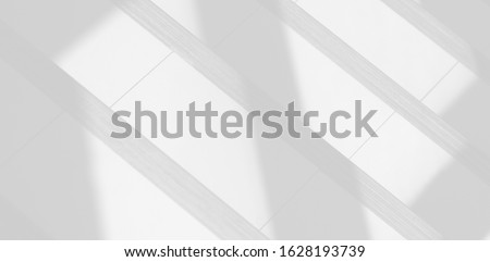 Background shadow and Nature shadows.Gray shadows trees leaf on white wall. Abstract shadows nature concept blurred background.White and Black.Texture shadows   #1628193739