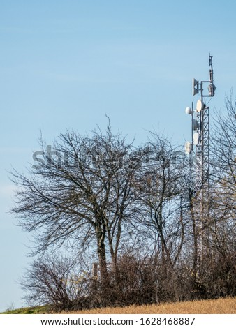 Transmission mast in between trees #1628468887
