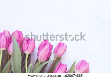 Tulips flowers on blue abstract background. Flat lay, top view. Lovely greeting card with tulips for Mothers day, wedding or happy event - Image.