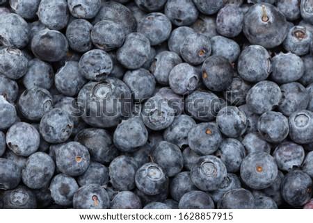 Fresh blueberries background. Cyanococcus. Cuisine backdrop #1628857915