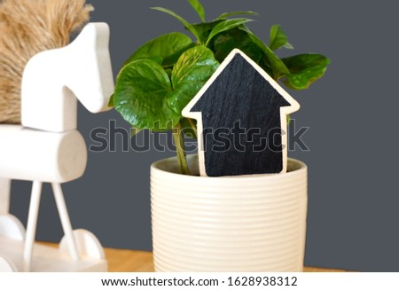 Small black chalkboard with free copy space in the pot in front of green houseplant Coffea arabica in the foreground and home decor, white wooden horse toy in the background