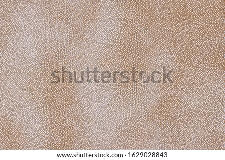 Light brown stingray skin texture