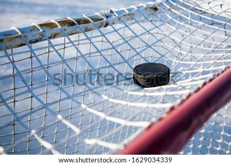 Hockey Puck on Top of Net #1629034339