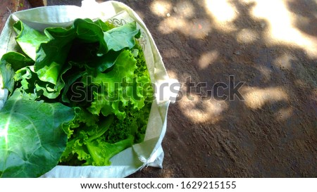 Organic Kailan and organic slada in my own clothing  bag. #1629215155