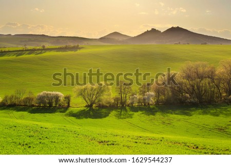 Tree alley in spring field with hills in the background, on one of the hills you can see the silhouette of Buchlov Castle #1629544237