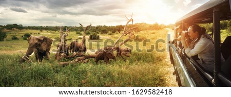 A group of young people watch and photograph wild elephants on a safari tour in a national park. Island Sri Lanka. Royalty-Free Stock Photo #1629582418