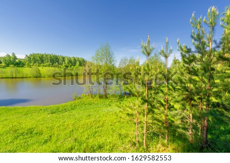 The lake is a large body of water surrounded by land. Walnut and pine trees grow along the edge, complete calm, beautiful hatching in the water #1629582553