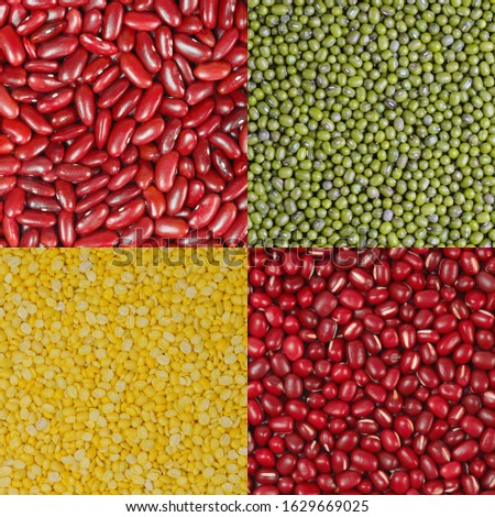Collection of different legumes, adzuki beans, red beans, green beans, yellow beans and chickpeas as background #1629669025