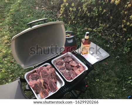 Gas grill Weber Q1200 Liquid Propane Grill, Black and steak T-bone.