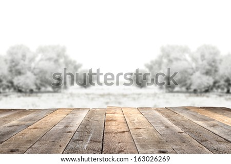 winter garden and wooden floor