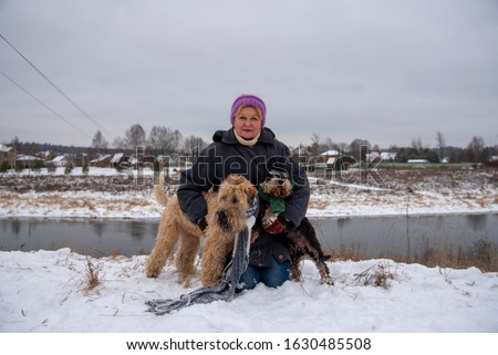 Photo of an elderly woman with two dogs, a Wheat Terrier and a miniature Schnauzer, on a snow-covered river Bank against the background of a village. #1630485508