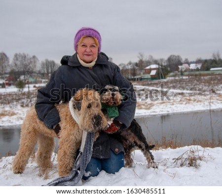 Photo of an elderly woman with two dogs, a Wheat Terrier and a miniature Schnauzer, on a snow-covered river Bank against the background of a village. #1630485511
