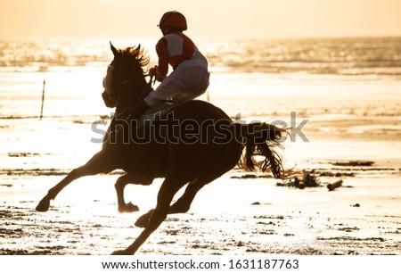 Silhouette of race horse and jockey racing racing into the sun on the beach, wild Atlantic way on the west coast of Ireland #1631187763