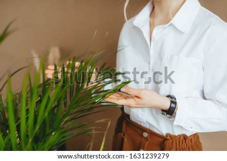 Green plant in female hands. Green home fern. Closeup photo #1631239279