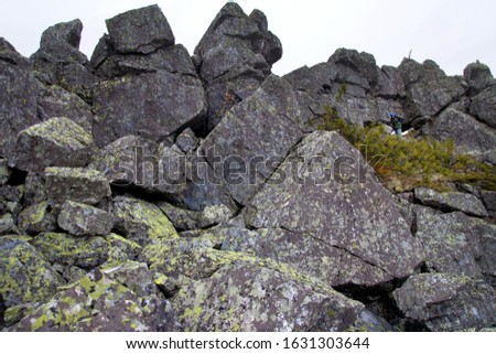 Southern Urals. A mature tourist makes an ascent to the top along a large stone placer. #1631303644