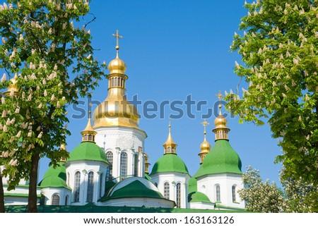 Cathedral Saint Sophia in Kiev in framing the flowering chestnut #163163126