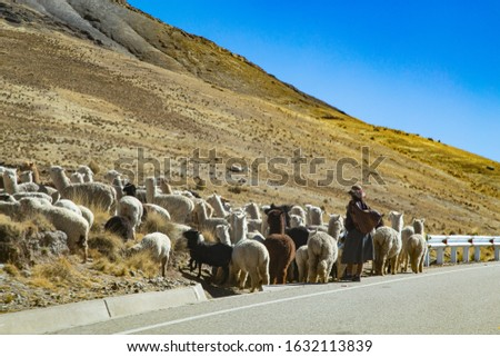picture taken on the Puno-Cusco road