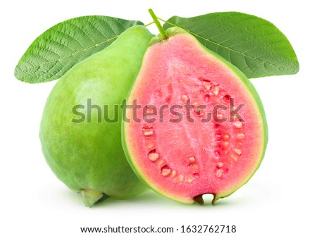 Isolated guava. One whole green guava fruit and a half with pink flesh on a branch with leaves isolated on white background with clipping path #1632762718