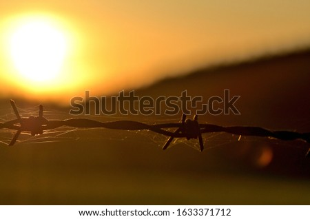 Rusty barbed wire at sunset symbolizing oppression, totalitarianism and war conflict. #1633371712