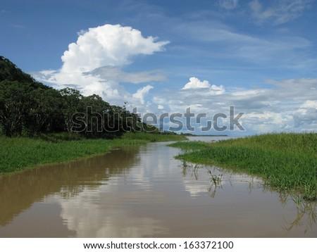 Beautiful and interesting landscapes, Amazonia Brazil