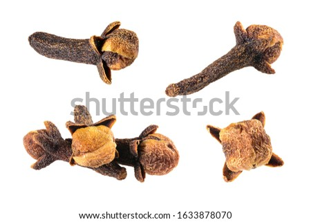 Clove spice. Set of dried cloves collection, macro close-up, Isolated on white background carnation 2, high resolution. #1633878070
