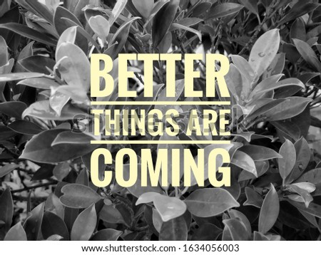 Inspirational life motivating quotes on brick wall background. Better things are coming #1634056003
