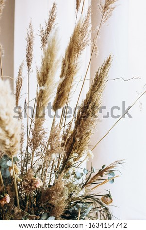beige dried flowers boho bouquet Royalty-Free Stock Photo #1634154742