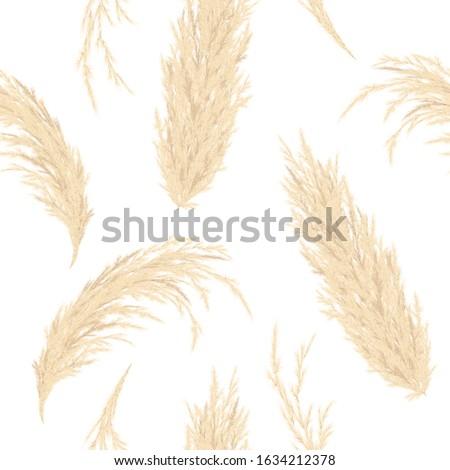 Golden Pampas grass seamless vector pattern.  #1634212378