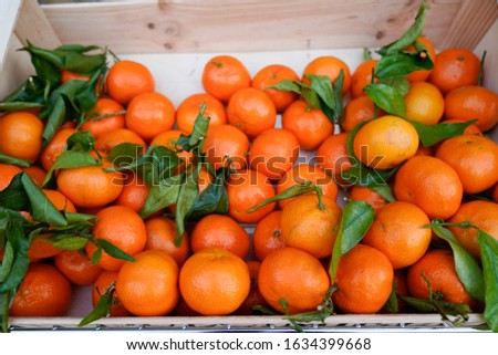 Organic clementine orange in box for sale in street small market #1634399668