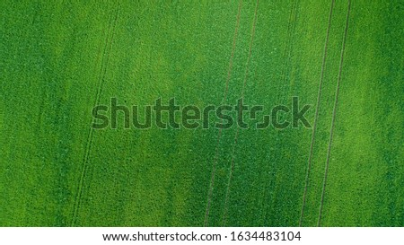aerial view of grass field. natural amazing green spring summer background. drone shot. Farmland from above. #1634483104