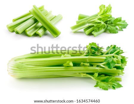 Celery stalk isolated. Celery sticks on white. Green celery with leaves. Set on white background. #1634574460