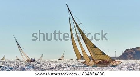 Sailboats under white sails at the regatta. Sailing yacht race #1634834680
