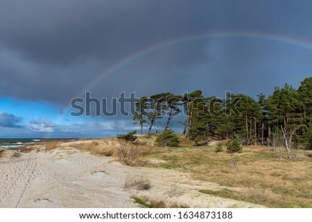 Baltic sea coast in windy day. #1634873188