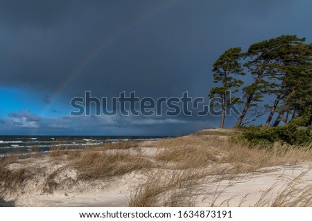 Baltic sea coast in windy day. #1634873191