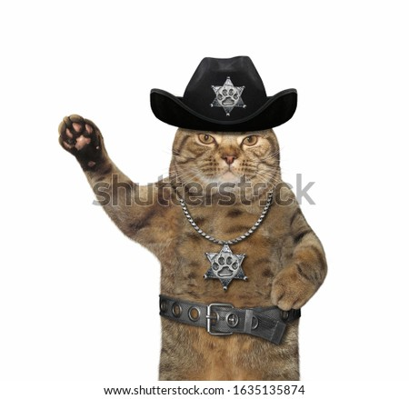 The beige cat policeman is wearing in a black cowboy hat, a police badge around his neck and a stainless steel belt. White background. Isolated.