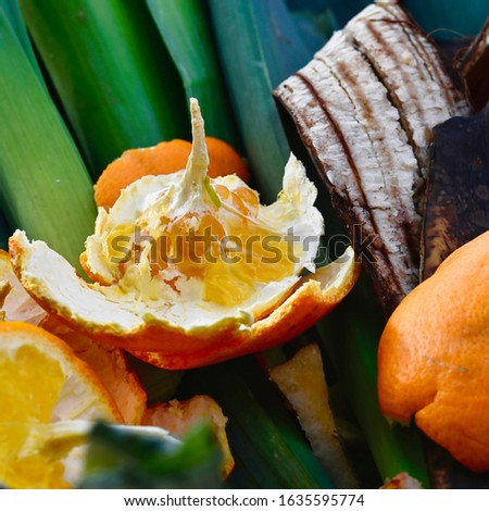 View into a container with organic waste for recycling, which consists of leeks, banana peels and orange peels. #1635595774