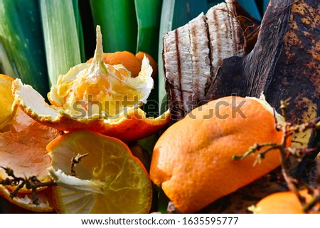View into a container with organic waste for recycling, which consists of leeks, banana peels and orange peels. #1635595777